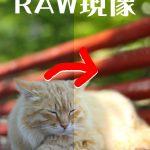 RAW現像~僕のワークフロー~