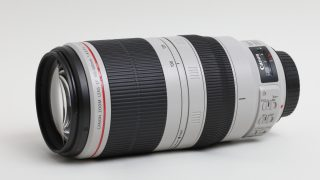 EF100-400mm F4.5-5.6L IS II USMレビュー