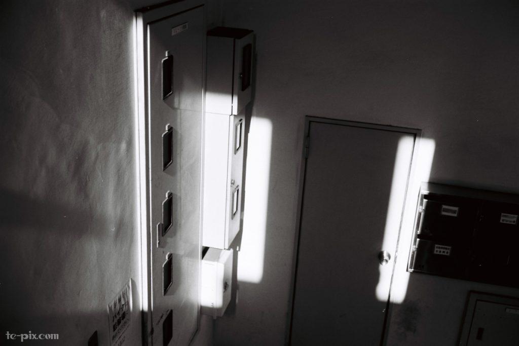 富士フイルムのモノクロフィルムACROS100の作例写真「ハイライト側の階調が豊か」