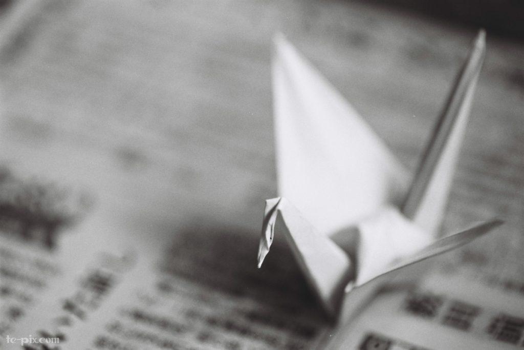 富士フイルムのモノクロフィルムACROS100の作例写真「マクロ写真」