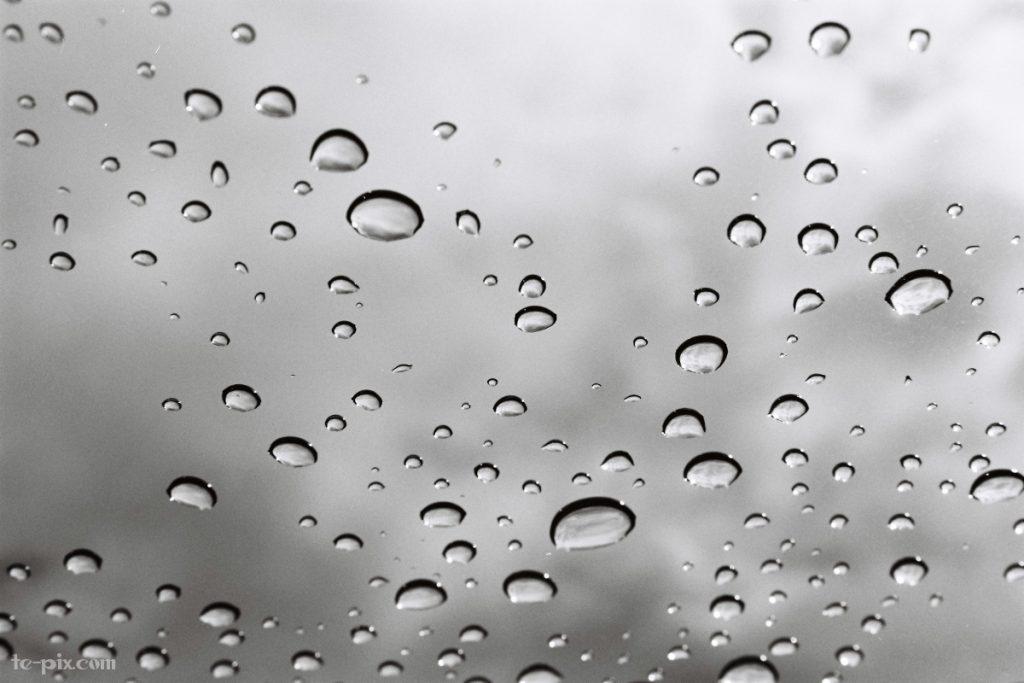 富士フイルムのモノクロフィルムACROS100の作例写真「雨の日」